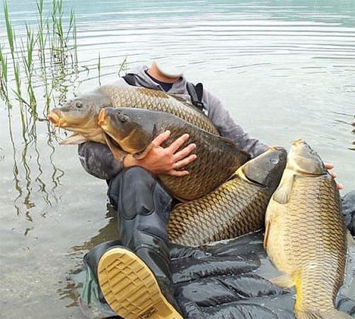 Шаблоны - профессии: Настоящий рыбак