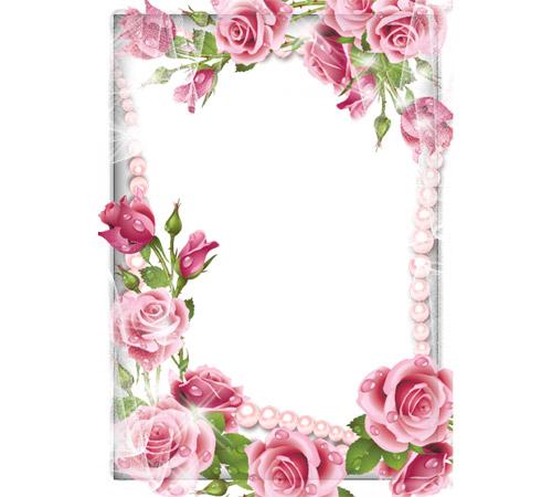 Рамки с цветами для фотошопа: Нежные розы