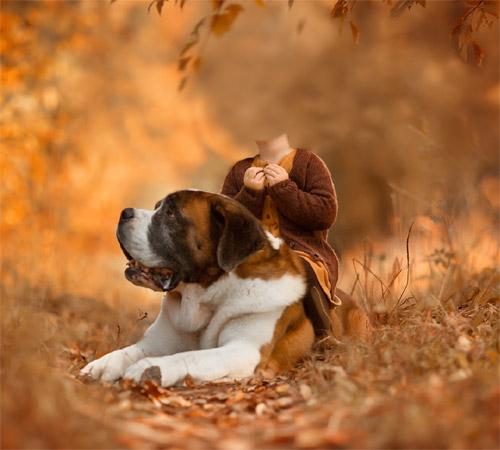 Детские шаблоны для фотошопа: Девочка с собакой