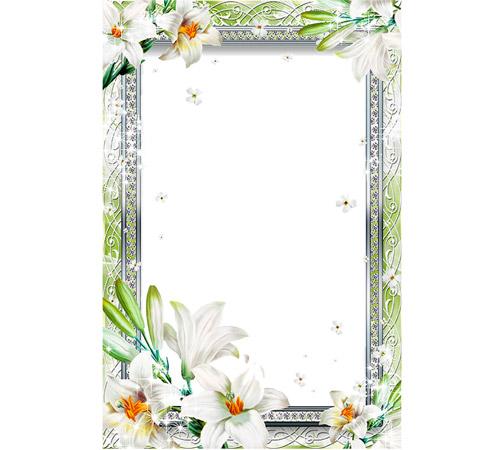 Рамки с цветами для фотошопа: Нежные лилии