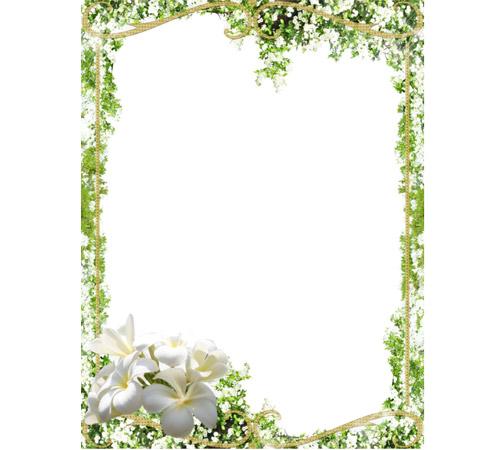 Рамки с цветами для фотошопа: Молодая зелень