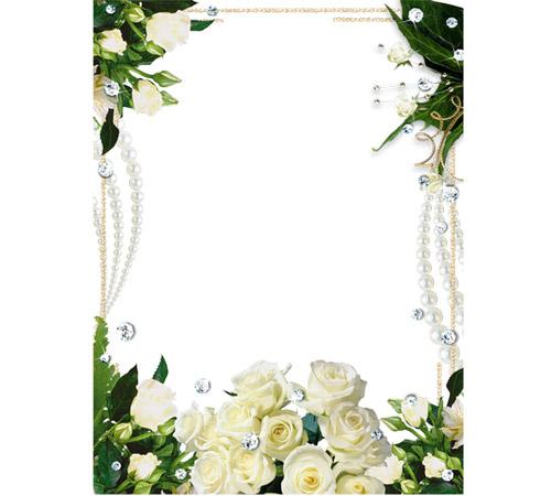 Рамки с цветами для фотошопа: Белые розы