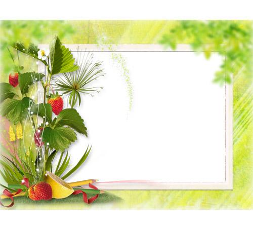 Рамки с цветами для фотошопа: Цветущая земляничка