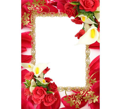 Рамки с цветами для фотошопа: Розы и калы
