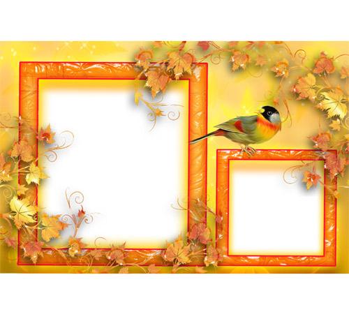 Рамки с цветами для фотошопа: Трели соловья