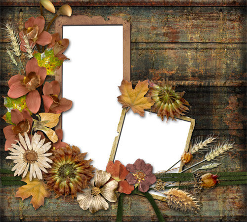 Рамки с цветами для фотошопа: Осенняя аппликация