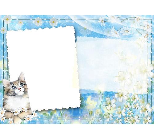 Женские рамки для фотошопа: Ты мой котик!