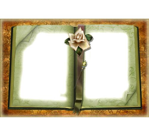 Рамки с цветами для фотошопа: Старый альбом