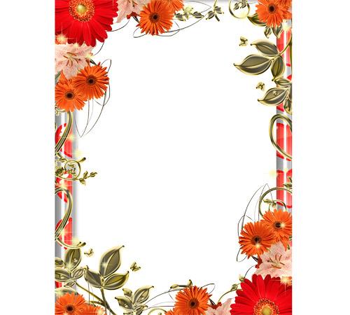 Рамки с цветами для фотошопа: Оранжевые герберы