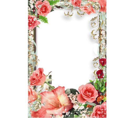 Рамки с цветами для фотошопа: Сияющие розы
