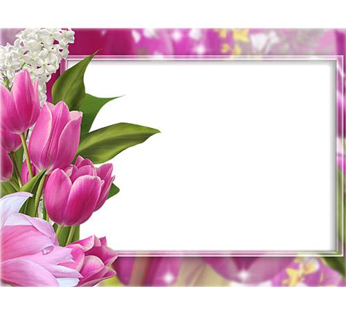 Рамки с цветами для фотошопа: Тюльпаны и сирень