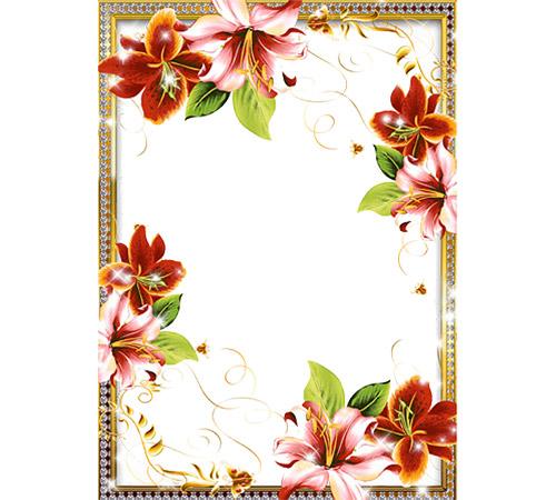 Рамки с цветами для фотошопа: Орхидеи