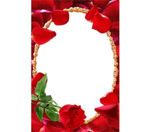 Рамки с цветами для фотошопа: Ореол алых роз