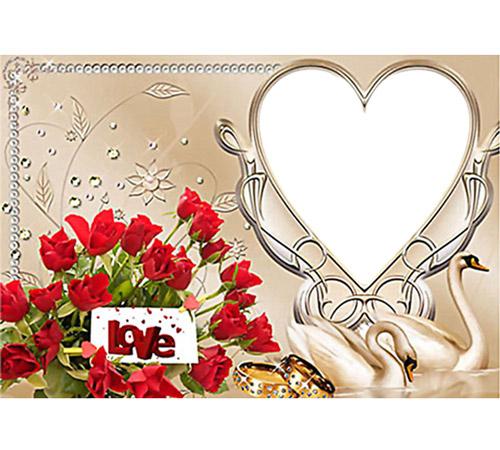 Рамки  - сердечки для фотошопа: Лебеди и сердце