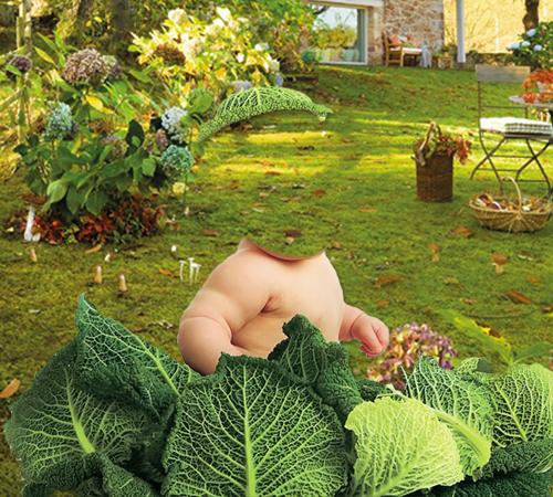 Детские шаблоны для фотошопа: Нашли в капусте