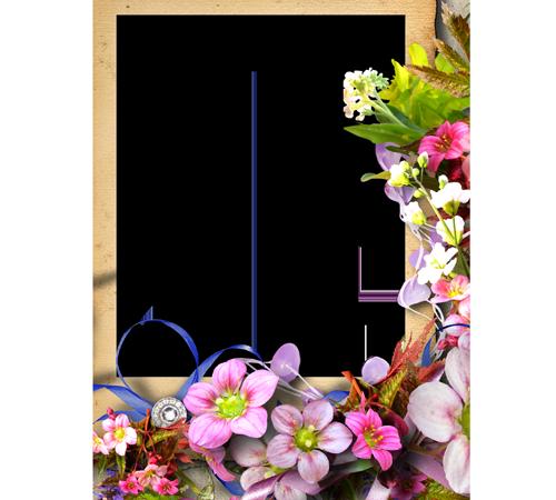 Рамки с цветами для фотошопа: Разноцветье