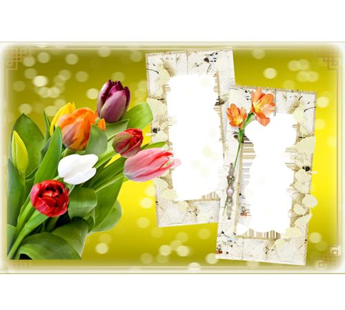 Рамки с цветами для фотошопа: Букет тюльпанов
