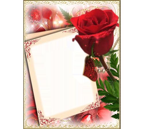 Рамки с цветами для фотошопа: Роза алая