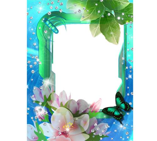 Рамки с цветами для фотошопа: Цветы, алмазы, бабочка