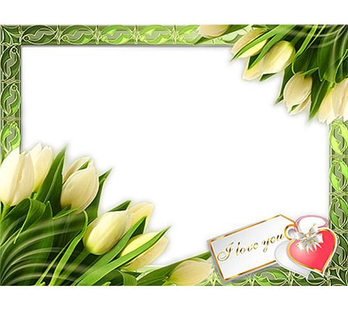 Рамки с цветами для фотошопа: Желтые тюльпаны