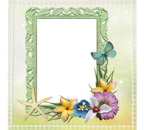 Рамки с цветами для фотошопа: Морская звезда